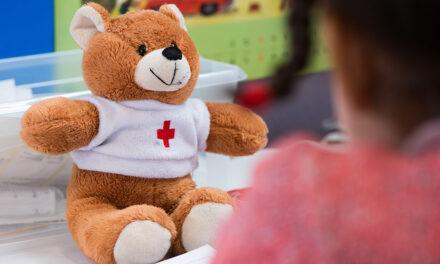 Telemedizin für Kuscheltiere: Teddybär Krankenhaus der Uniklinik Göttingen hilft in diesem Jahr per Post