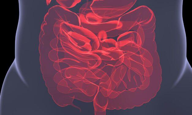Unsichtbare Entzündungen der Darmschleimhaut erklären Nahrungsmittelunverträglichkeiten