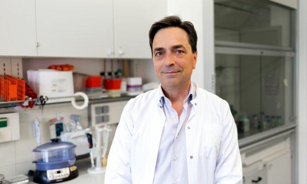 Weltweit erste Gentherapie mit Nanopartikeln erfolgreich bei Schädigungen des Sehnervs angewendet