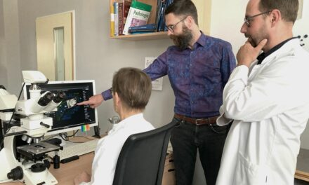 Wie künstliche Intelligenz die Diagnostik von Karzinomen in Brust und Magen revolutioniert – Dresdner Uniklinikum und Start-Up asgen erproben KI-basiertes Softwaresystem